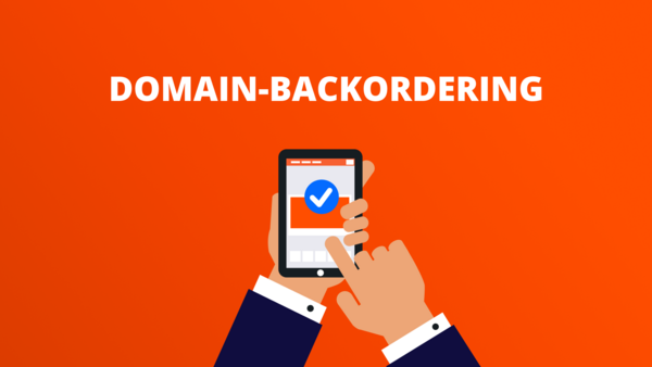 Domain-Backordering InterNetX Blog